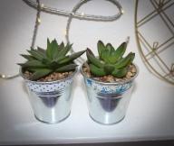 Fabric plant pots